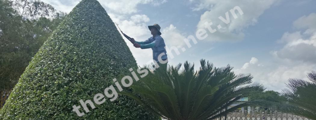 Slide cham soc canh quan - Trang Chủ