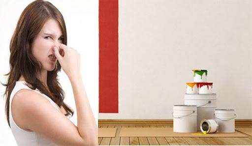 cach khu mui son nha moi - Cách khử mùi sơn nhà mới an toàn cho sực khỏe